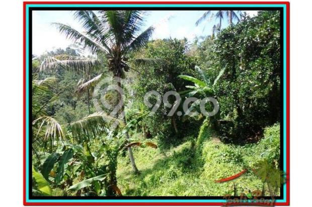 Prospek Investasi, 1.500 m2  Tebing dan sungai besar di Ubud TJUB503 4098801