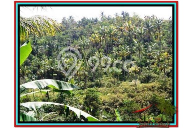 Prospek Investasi, 1.500 m2  Tebing dan sungai besar di Ubud TJUB503 4098806