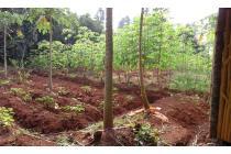 Tanah di jual di Setu Bekasi, Harga murah,