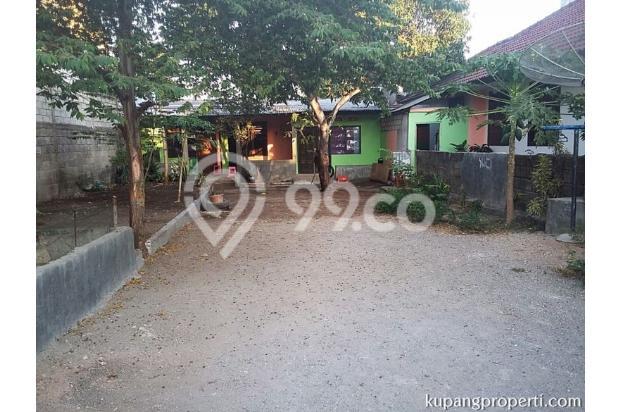 Rumah+Kos dijual dekat Kampus di Kupang 21463280