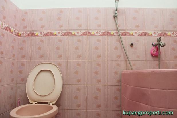 Rumah+Kos dijual dekat Kampus di Kupang 21463282