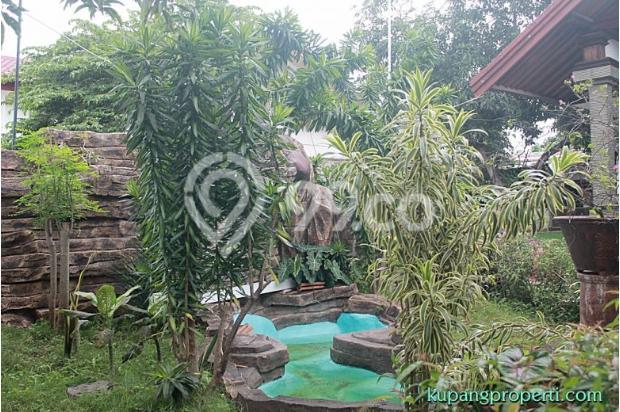 Rumah+Kos dijual dekat Kampus di Kupang 21463288