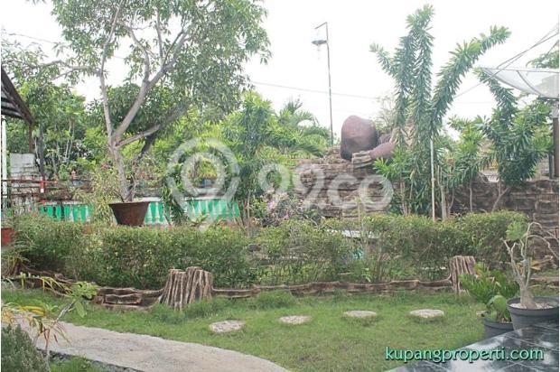 Rumah+Kos dijual dekat Kampus di Kupang 21463289