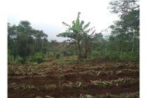 Tanah Masih AJB dan Girik di Tanjungsari Sumedang