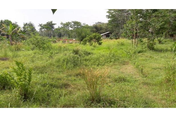 Lunas Tanah Tunai Potongan 100 Jt di Perumahan Bojong Gede 14419310