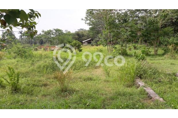 Lunas Tanah Tunai Potongan 100 Jt di Perumahan Bojong Gede 14419308