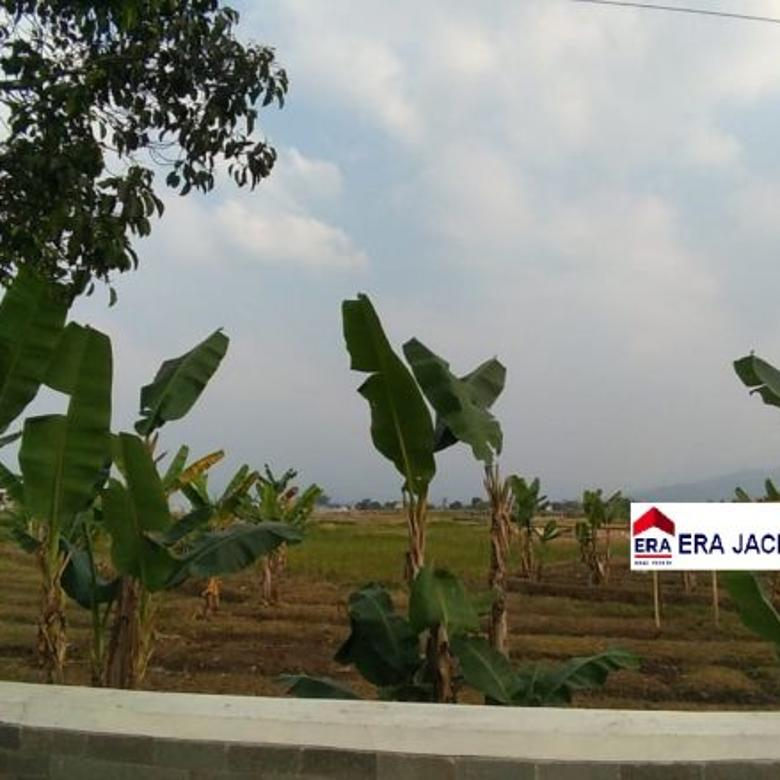 Tanah Soreang