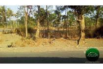 Tanah Luas jalan Kaliurang Km 10 ( HM 259 )