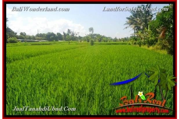 View Sawah 3,500 m2 di Ubud Gianyar 18273793