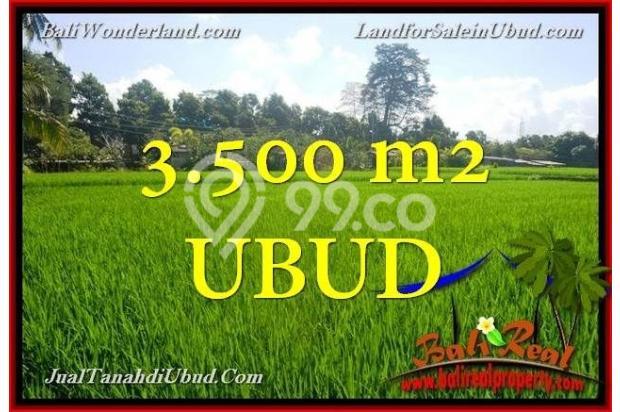 View Sawah 3,500 m2 di Ubud Gianyar 18273792