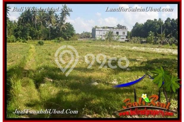 View Sawah 3,500 m2 di Ubud Gianyar 18273794