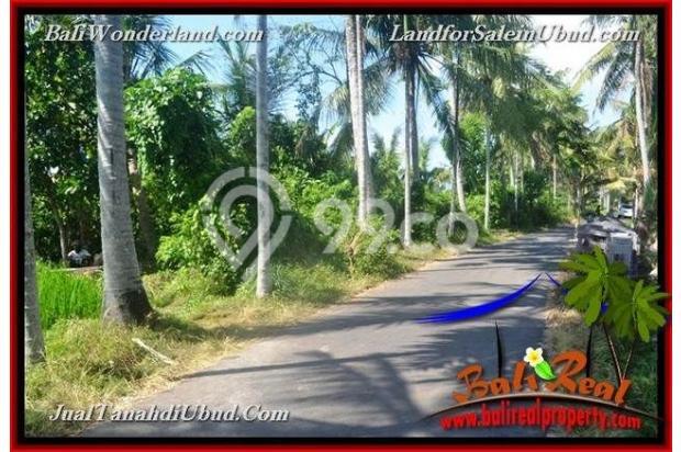 View Sawah 3,500 m2 di Ubud Gianyar 18273791
