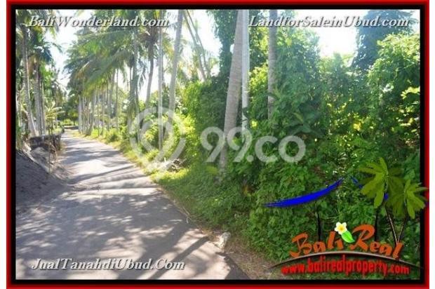 View Sawah 3,500 m2 di Ubud Gianyar 18273795