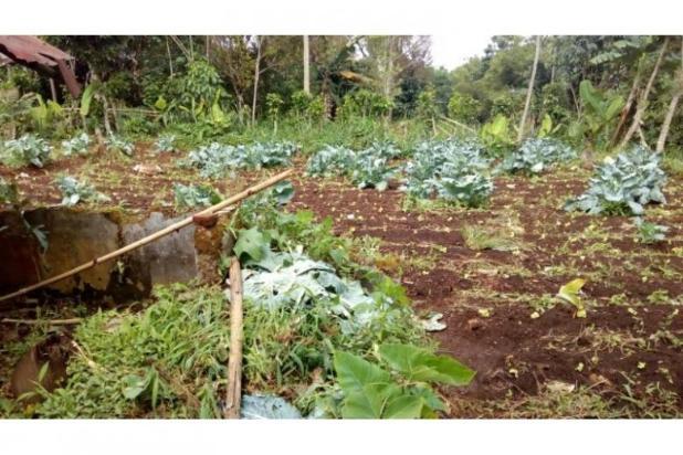 Jual Tanah daerah Cimahi, Cari Tanah di Cisarua Bandung 11013141