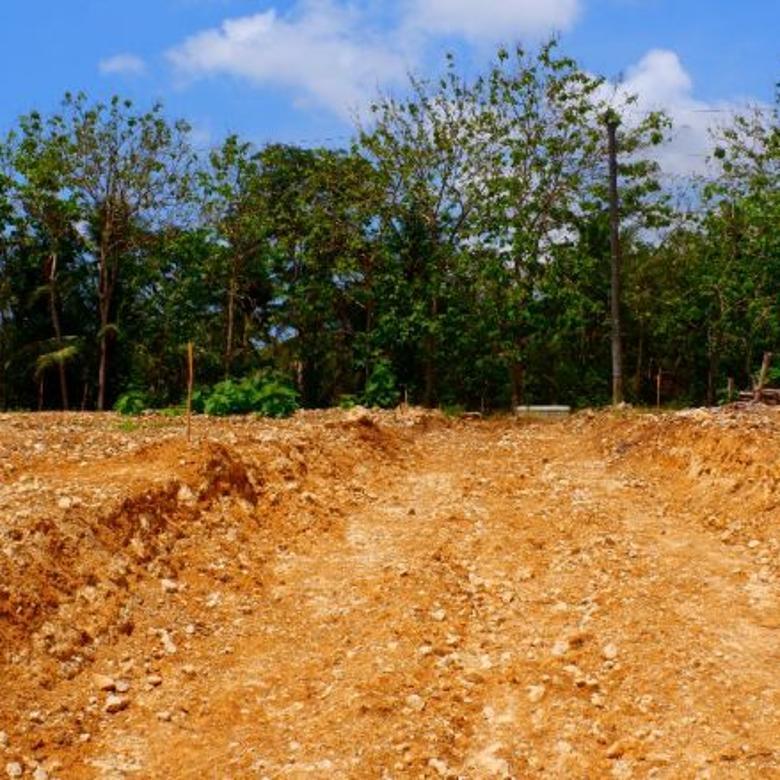 Tanah-Kulon Progo-3