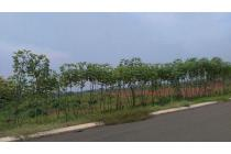 Tanah-Subang-7
