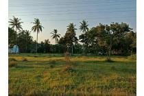 o81.555.323.274 Tanah Dijual Murah Area Blitar