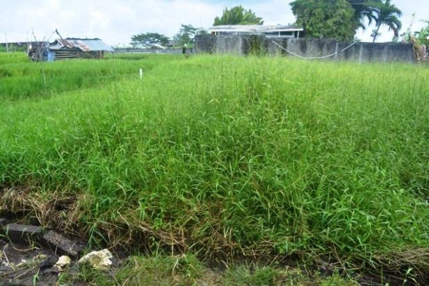 Rp8,86mily Tanah Dijual