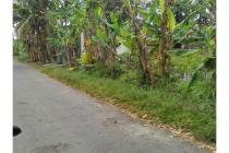 Tanah Luas Dekat Alun Alun Denggung Sleman Yogyakarta LT 1850 m2