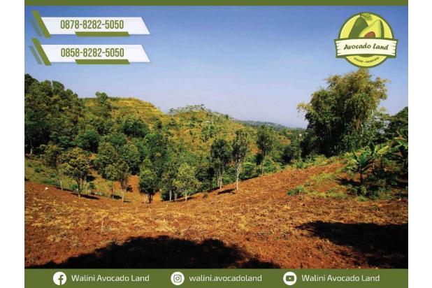 Rp1,58mily Tanah Dijual