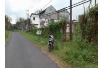 Rumah dan gudang ex peternakan Sapi Silo jember