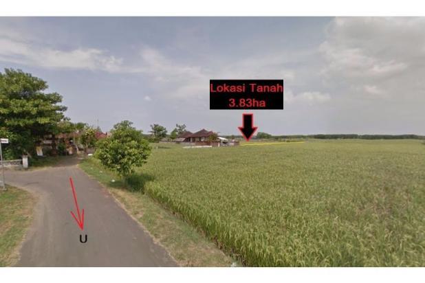 Tanah Investasi Termurah di Bali, Kab Negara 4692929