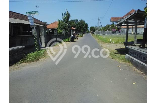 Tanah Investasi Termurah di Bali, Kab Negara 4692939