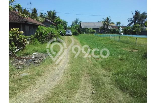 Tanah Investasi Termurah di Bali, Kab Negara 4692943