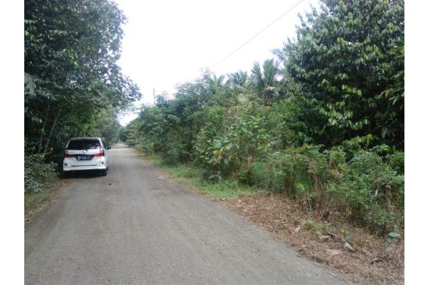 Beli Tanah Tepi Aspal Lalu Bangun Ruko: Anda Bakal Punya Aset plus Bisni 13245677