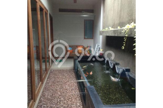 Kolam Koi mewah dan unik dengan tepi kaca 4914652