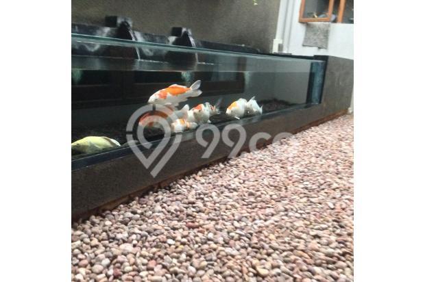 kolam koi unik dengan taman kering 4917630