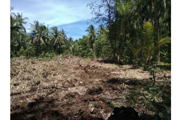 Tanah Kaveling Daendels: Cicil 12X Tanpa Bunga 17267040