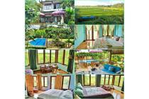 villa dijual di daerah umalas kerobokan kuta badung