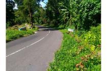 Dijual Tanah Cocok Untuk Investasi Di Tepi Jalan Menuju Ijen