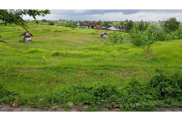 Rp2,92mily Tanah Dijual