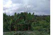 Tanah Dijual Belakang Perumahan Bukit Permata Bundaran Pramuka