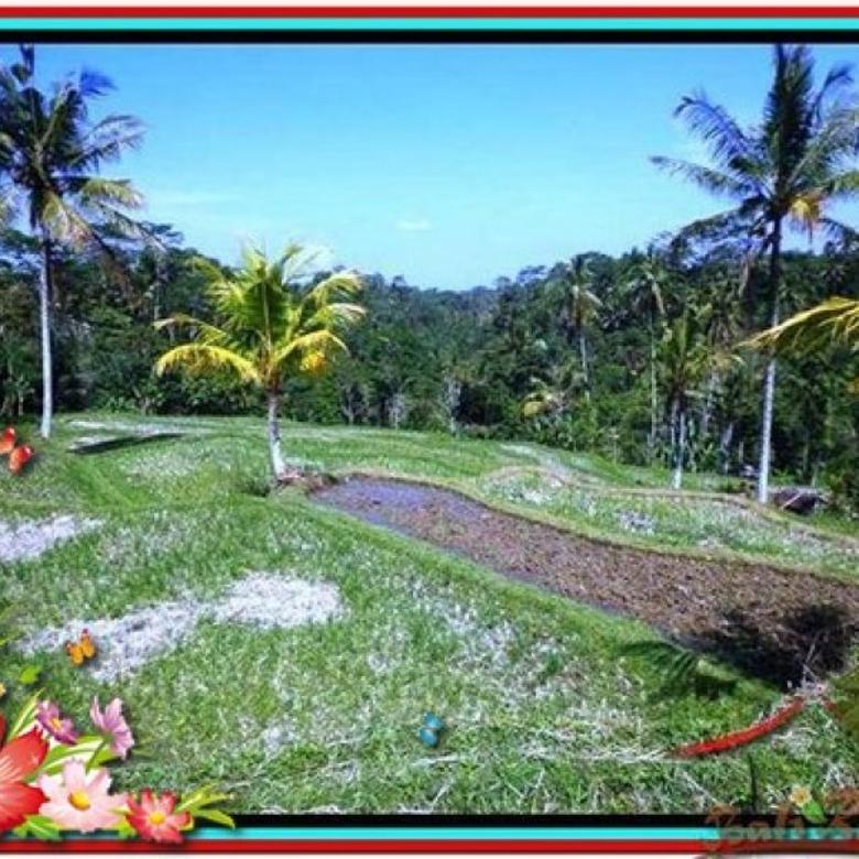 Tanah Langka, 1.900 m2 View Sawah di Ubud Tegalalang