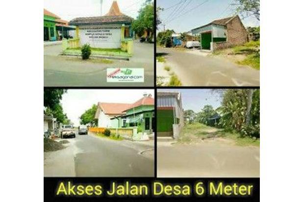 Tanah Kavling di Ds Banjarwungu Kec.Tarik Kab.Sidoarjo hks4233 14371959