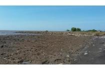 Tanah 538ha garapan timbul tepi pantai pakuhaji tangerang