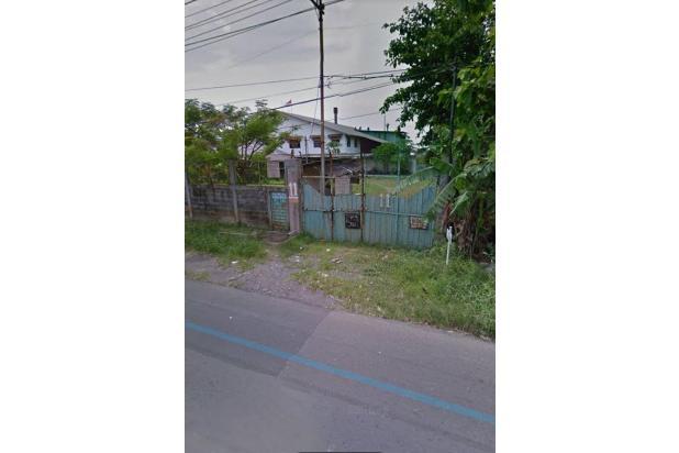 Rp81mily Tanah Dijual