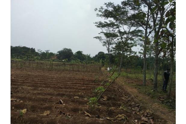 DiJual Tanah Kavling Murah Lokasi Strategis 13244911