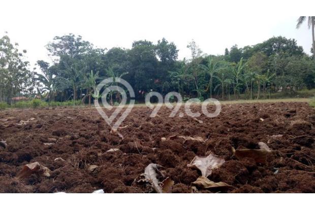 DiJual Tanah Kavling Murah Lokasi Strategis 13244920