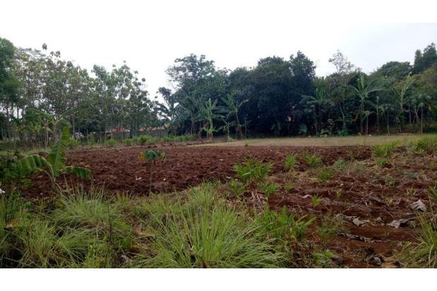 DiJual Tanah Kavling Murah Lokasi Strategis 13244922