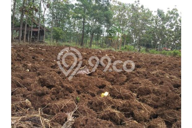 DiJual Tanah Kavling Murah Lokasi Strategis 13244924