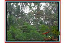 sangat Spesial Potensial Tanah 1.050 m2 di Ubud Tegalalang B422