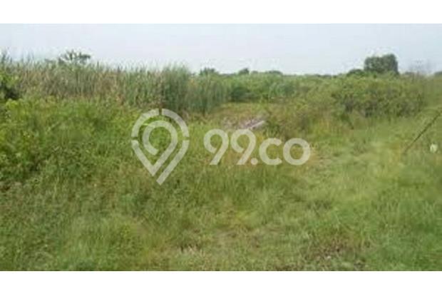 Tanah Kavling Siap Bangun Cocok Untuk Segala Bangunan di Kutisari Utara 16564071