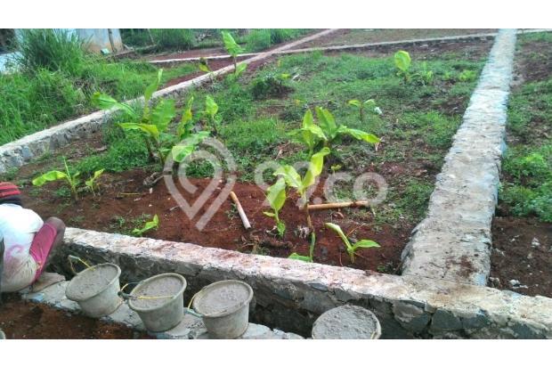 Investasikan Uang Anda untuk Tanah Kaveling: Aman 13244556