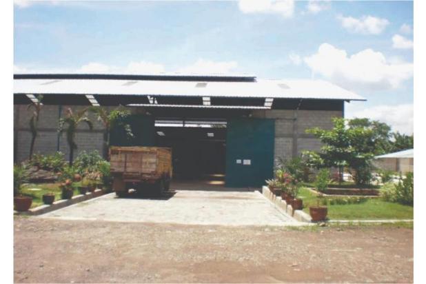 gudang dan pabrik dijual di balaraja, jayanti, tangerang