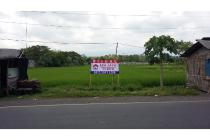 Dijual Tanah Bangsalsari