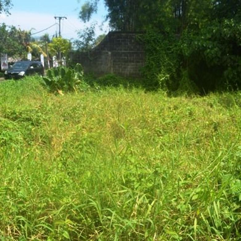 Tanah cantik view Link villa di Canggu Batu Bolong   CGC223